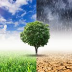 Pension funds adopt strikingly different approaches to climate change risk