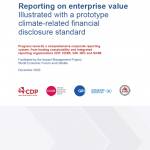 A prototype climate disclosure standard with a flawed conceptual framework